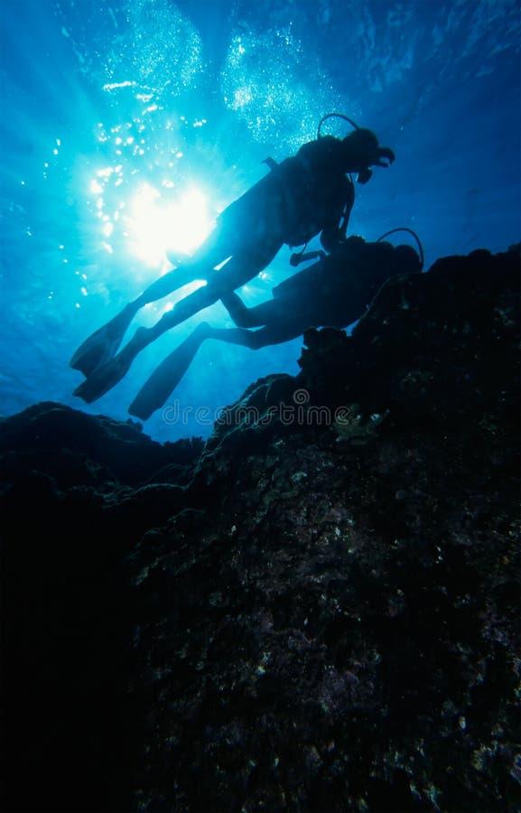 Mergulhando o recife foto de stock