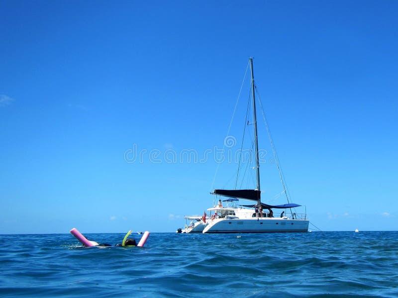 Mergulhando a viagem no grande recife de coral, Austrália foto de stock royalty free
