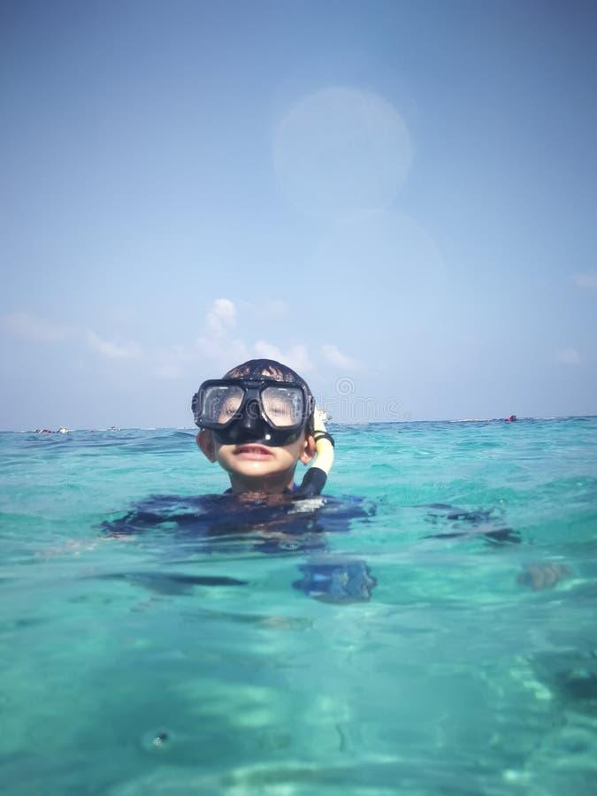 mergulhar na água Foco no primeiro plano foto de stock royalty free