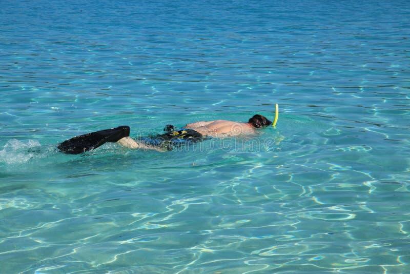 Mergulhar na baía de Coki em St Thomas fotografia de stock royalty free