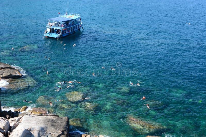 Mergulhar na baía de Hin Ngaam Koh Tao Arquipélago de Chumphon tailândia imagens de stock royalty free