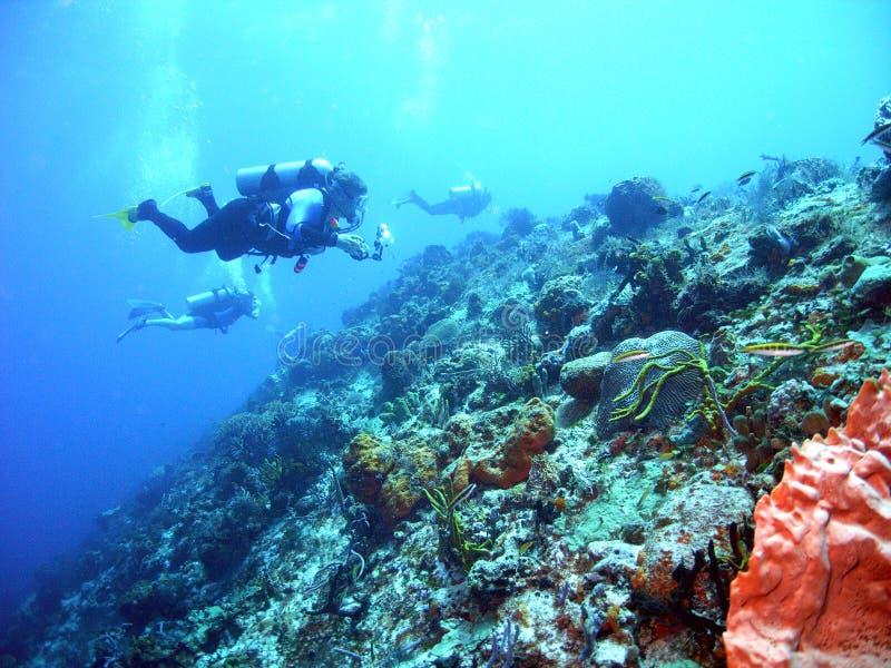Mergulho da tração de Cozumel fotografia de stock