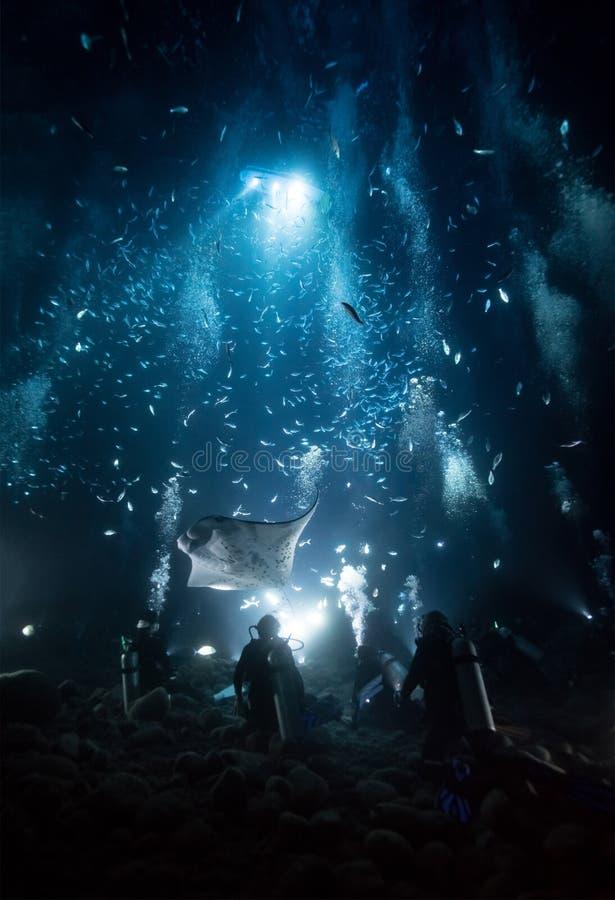 Mergulho do raio de manta de Kona imagem de stock royalty free