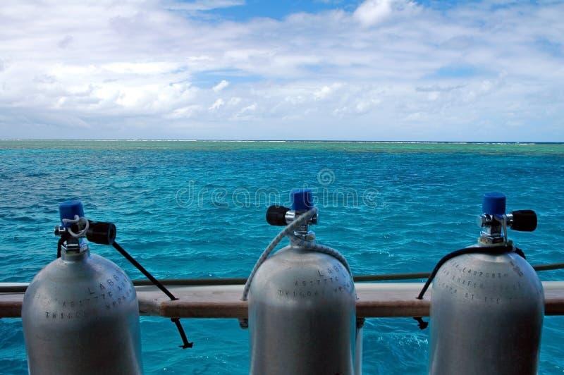 Mergulho do recife fotos de stock royalty free