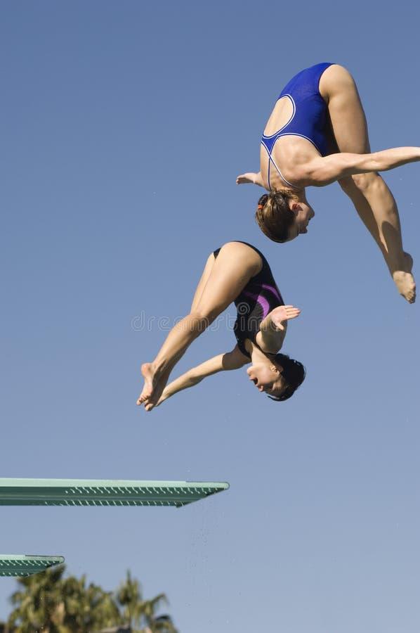 Mergulho fêmea do trampolim imagens de stock royalty free