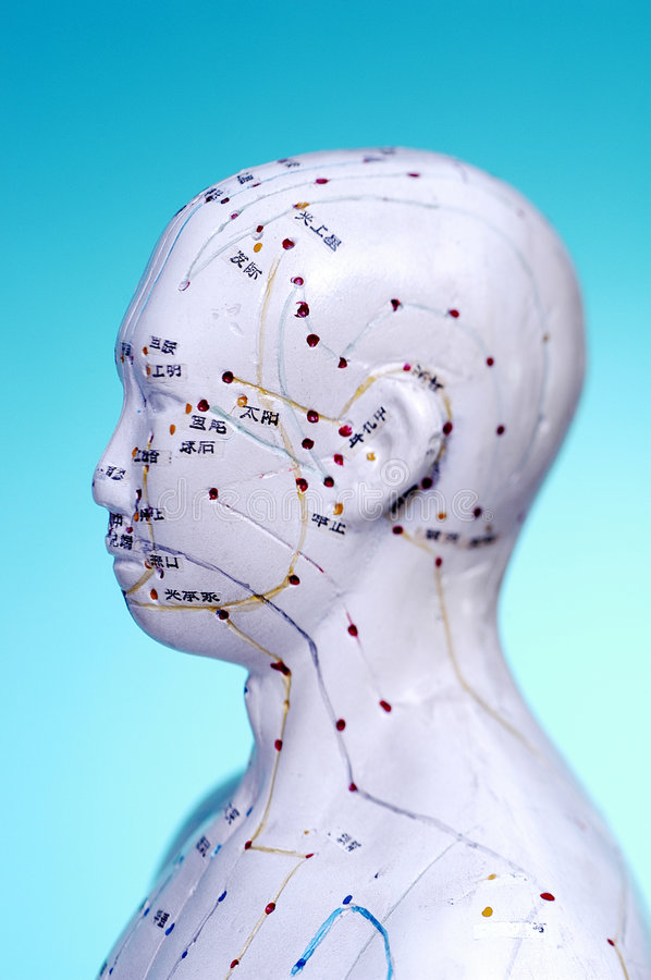 Meridian Head Acupuncture Points royalty free stock image