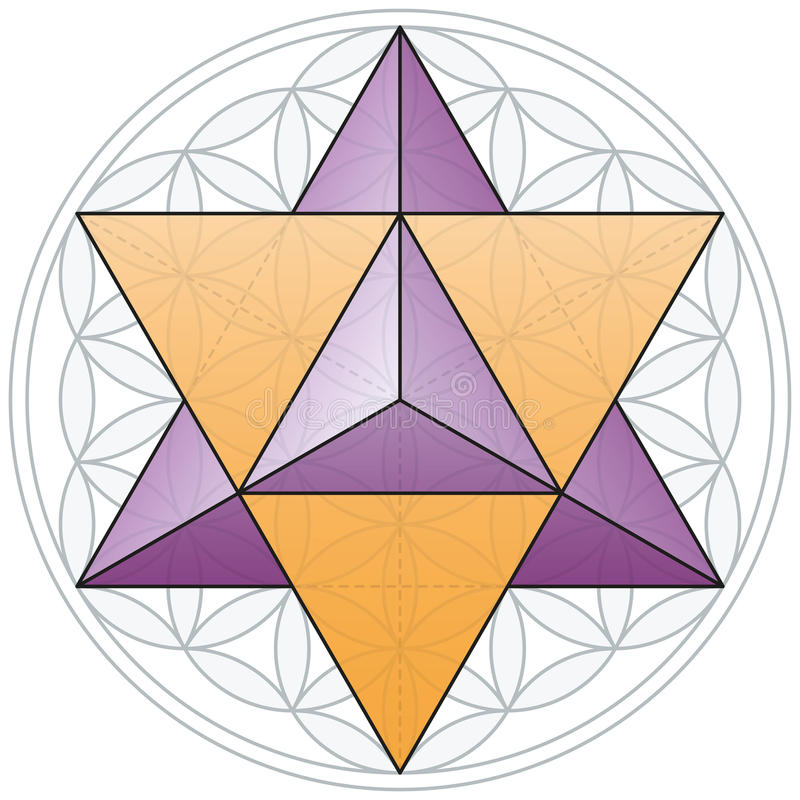 Free Merkaba And Flower Of Life Stock Photography - 34372352