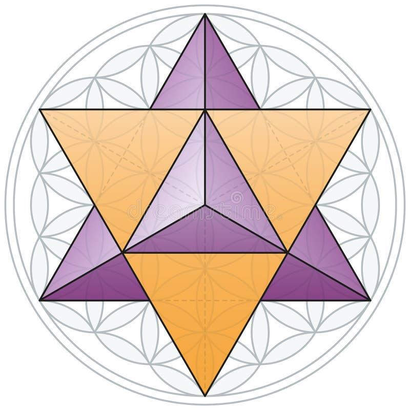 Merkaba et fleur de la vie illustration de vecteur