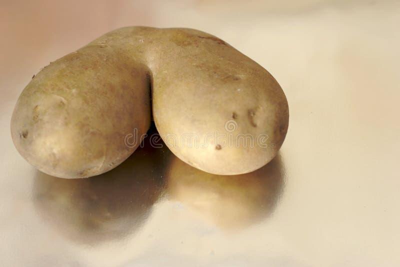 Merkwürdige Kartoffel stockbild
