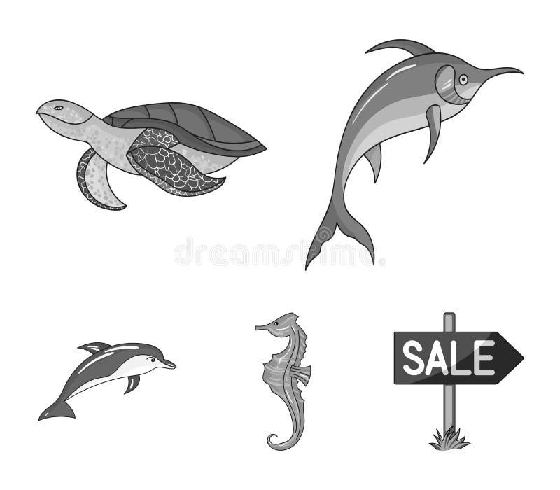 Merlin, sköldpadda och annan art Symboler för samling för havsdjur lagerför fastställda i monokromt stilvektorsymbol illustration royaltyfri illustrationer