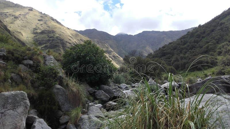 Природный заповедник в Merlo, San Luis Аргентине стоковое фото rf