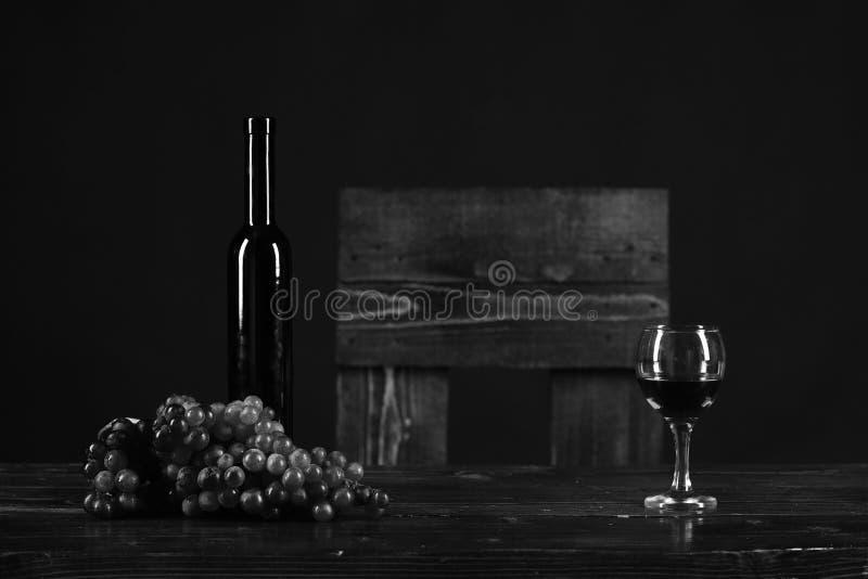 Merlot-, bordeaux- eller cabernet vinsammansättning Uppsättning av mörka druvor royaltyfria bilder