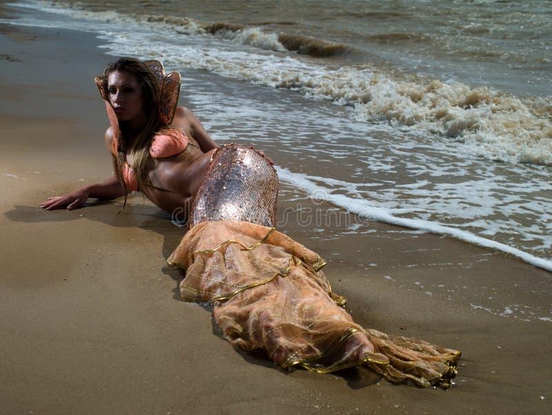 Mermaid_09 fotos de archivo libres de regalías