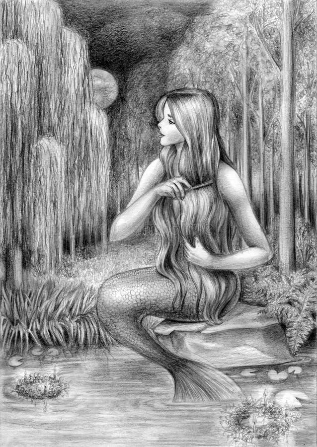 mermaid ilustração do vetor