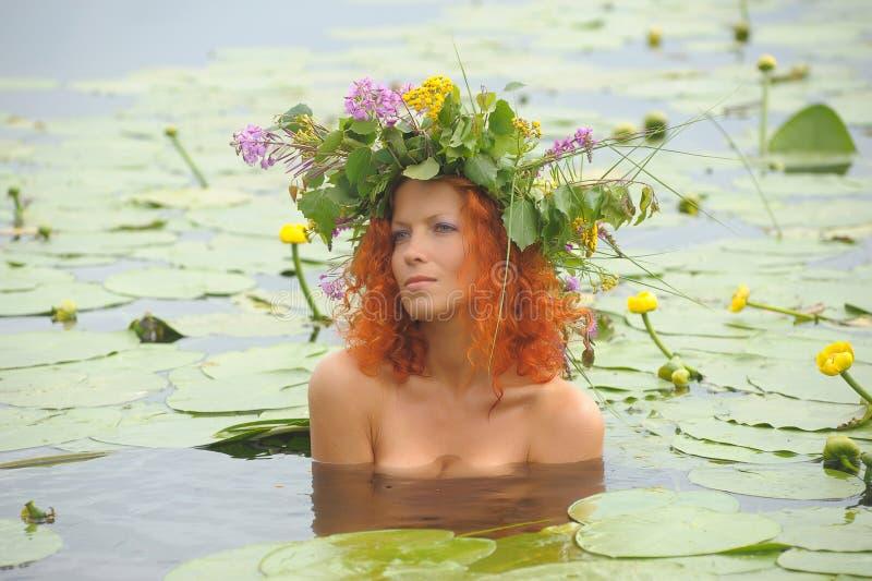 Mermaid i vattnet fotografering för bildbyråer