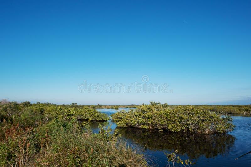 Merritt海岛野生生物保护区 库存图片