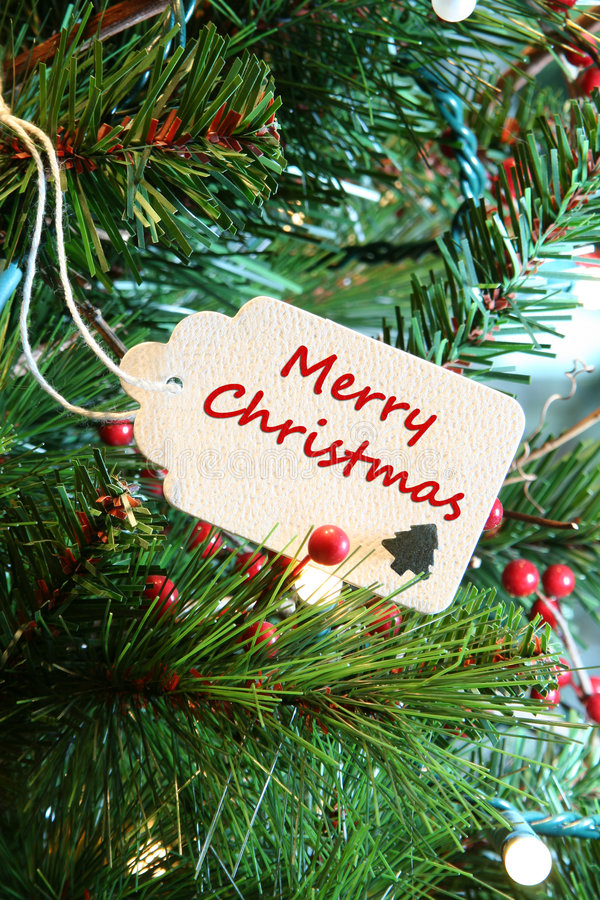 Merry Christmas. Card in a Christmas tree stock photo