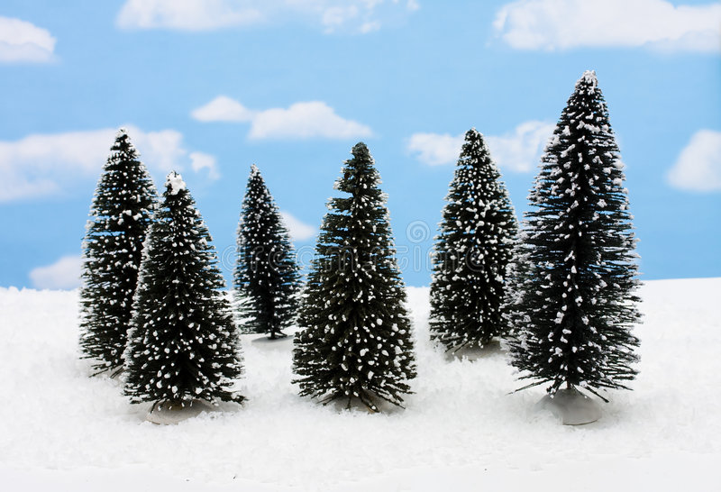 Merry Christmas. A group of evergreen trees on snow with sky background, merry Christmas stock photo