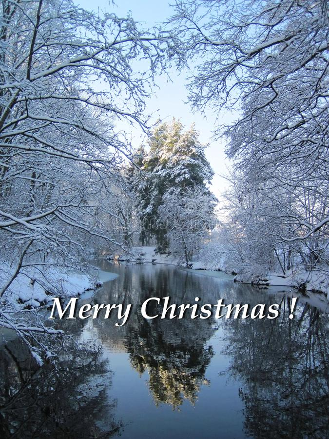 Merry Christmas card done using trees near river in winter , Lithuania. Beautiful natural snowy trees, river and note - Merry Christmas stock images