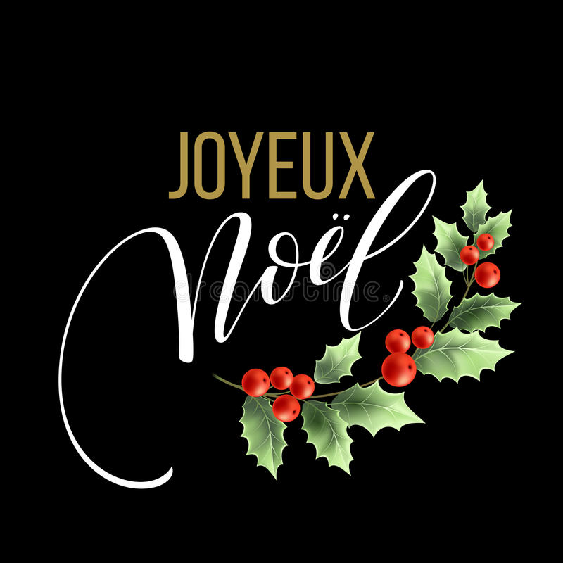 Merry christmas card template with greetings in french language download merry christmas card template with greetings in french language joyeux noel vector illustration stopboris Gallery