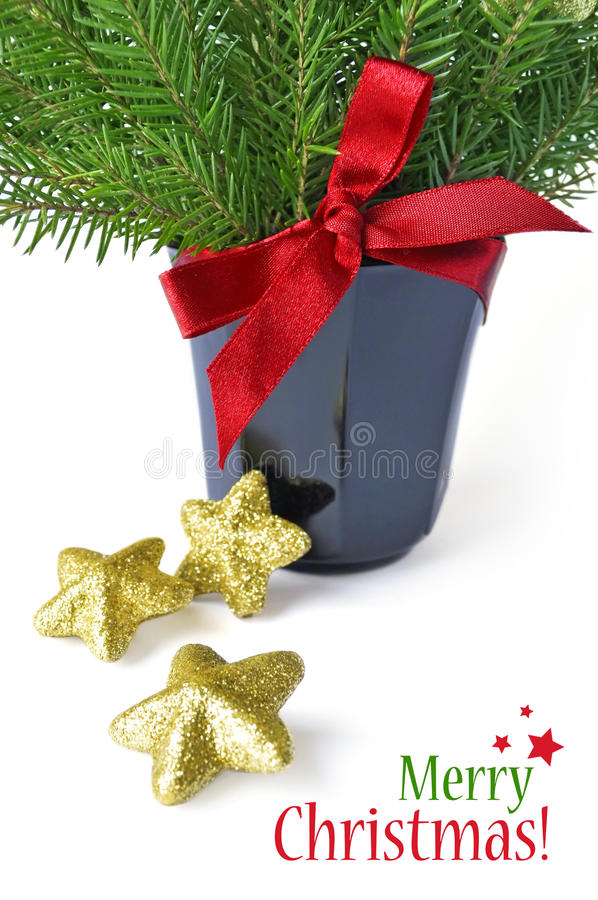 Download Merry Christmas stock photo. Image of green, glitter - 33638528