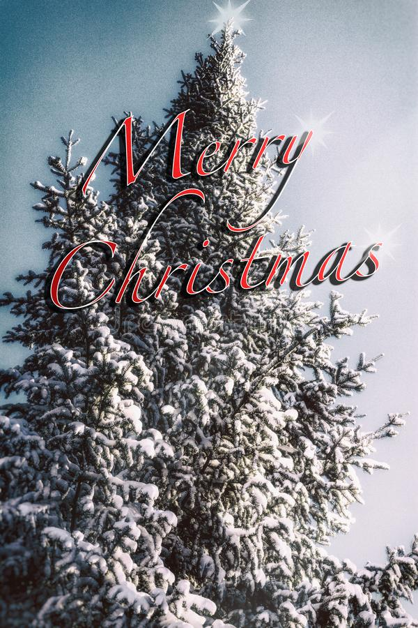 Merry Christmas greeting on vertical holiday background. royalty free stock photography
