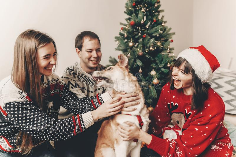 Merry christmas and happy new year concept. stylish hipster family in festive sweaters playing and smiling with cute dog at chris. Tmas tree lights. happy stock image