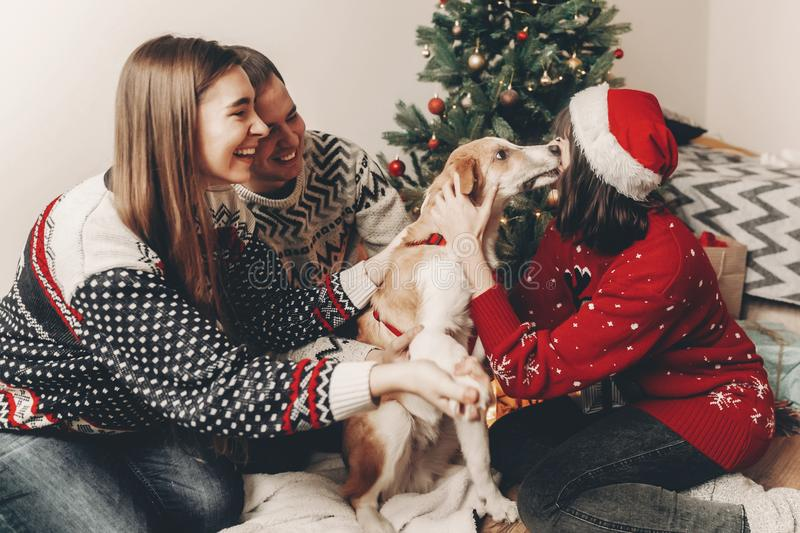 Merry christmas and happy new year concept. stylish hipster family in festive sweaters playing and smiling with cute dog at chris. Tmas tree lights. happy stock photos