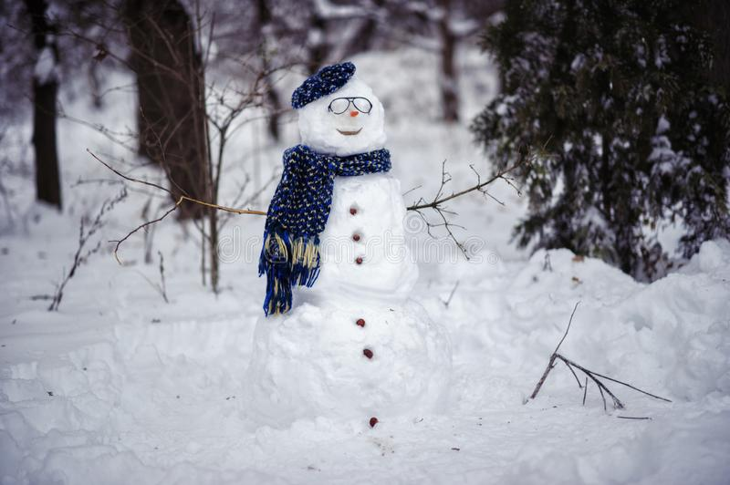 Merry christmas and happy new year greeting card with copy-space.Happy snowman standing in winter forest.Snow background royalty free stock photography