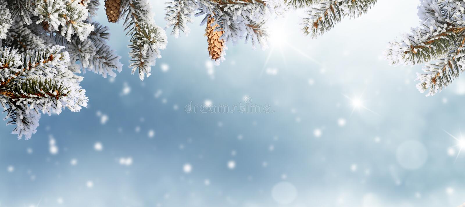 Merry Christmas and happy new year greeting card. Winter landscape with snow royalty free stock photography