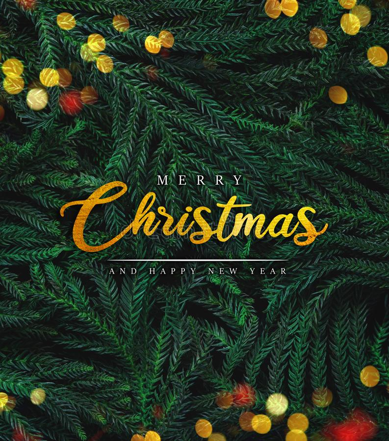 Merry Christmas Lettering on Fir Branches and Christmas Light Bokeh.  stock image