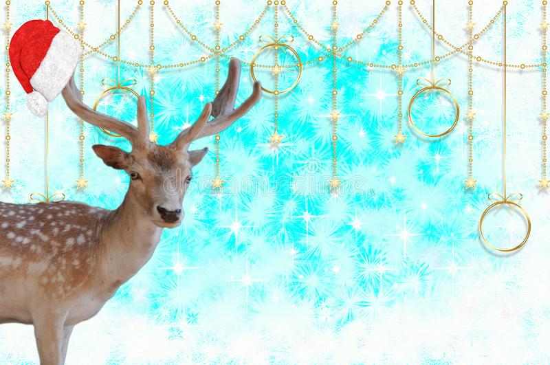 Merry christmas a reindeer with a santa claus bonnet on his antlers on a beautiful blue background with stars and snow cr. A Merry christmas a reindeer with a royalty free stock images