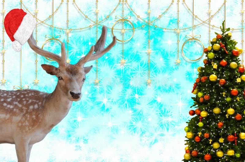Merry christmas a reindeer with a santa claus hat on his antlers and a decorated christmas tree on a beautifully decorate. A Merry christmas a reindeer with a royalty free stock photos