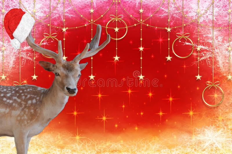 Merry christmas a reindeer with a santa claus hat on his antlers on a beautiful decorated background. A Merry christmas a reindeer with a santa claus hat on his stock image