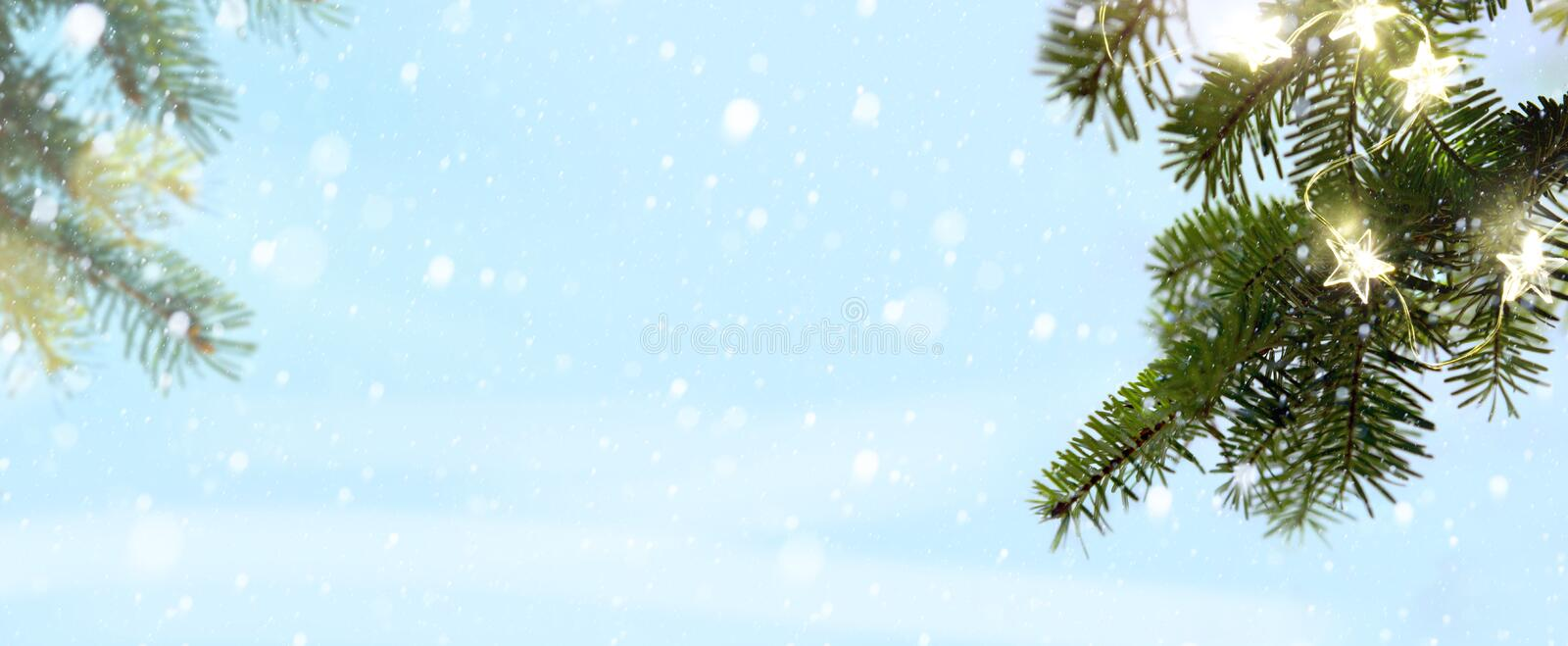 Merry Christmas - snow and fir tree branches with holidays light royalty free stock image
