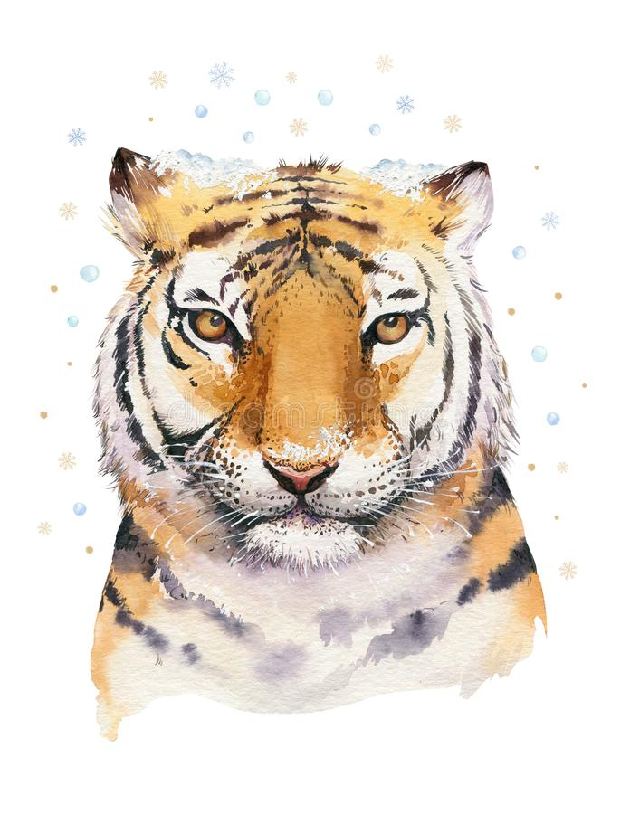 Merry Christmas watercolor lettering with isolated cute cartoon watercolor fun Siberian tiger illustration. Hand drawing. New year holiday greeting poster stock photos