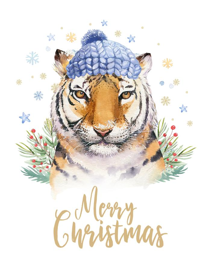Merry Christmas watercolor lettering with isolated cute cartoon watercolor fun Siberian tiger illustration. Hand drawing. New year holiday greeting poster royalty free illustration