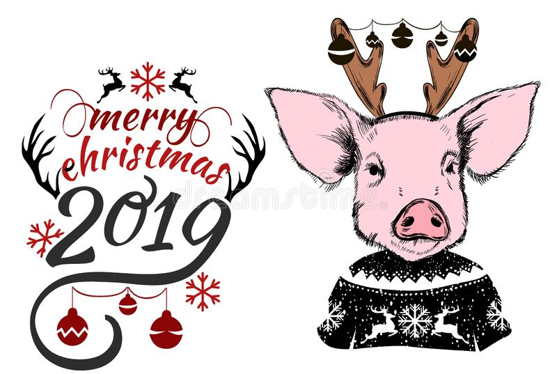 Merry Christmas 2019 Year of Pig greeting card vector illustration