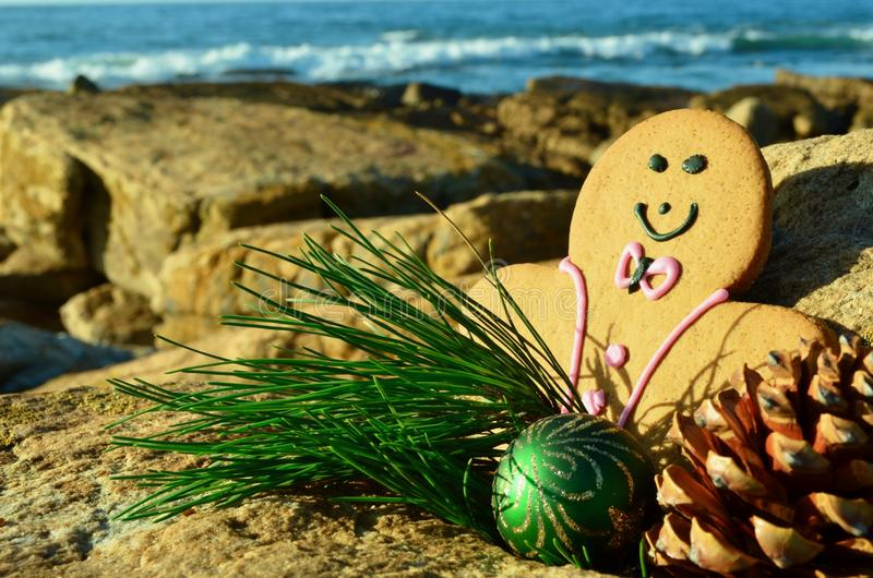 Merry Gingerbread man in a pink tuxedo Christmas by the sea green pine needles and cone Christmas in July. Merry Gingerbread man Christmas by rocky sea green royalty free stock images