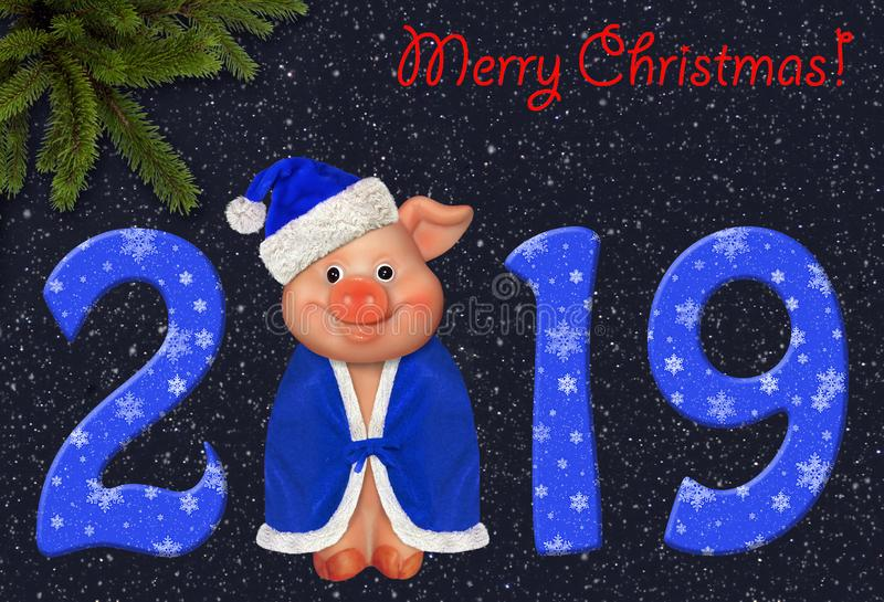 Merry pig in the 2019 year 2. The funny greeting card with new year 2019. Merry Christmas. There is a smiling pig in a blue hat and a cloak royalty free stock photo