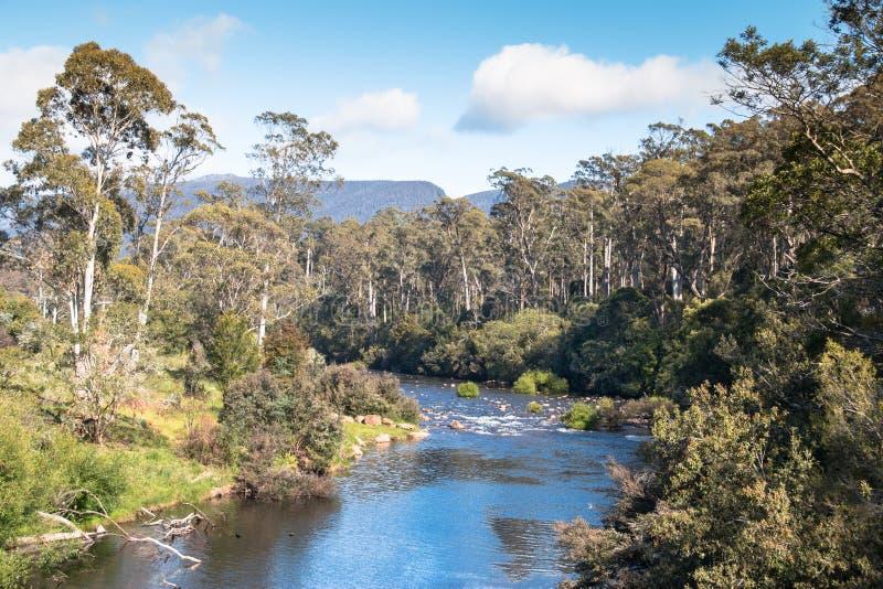 Tasmanian Mersey River royalty free stock image