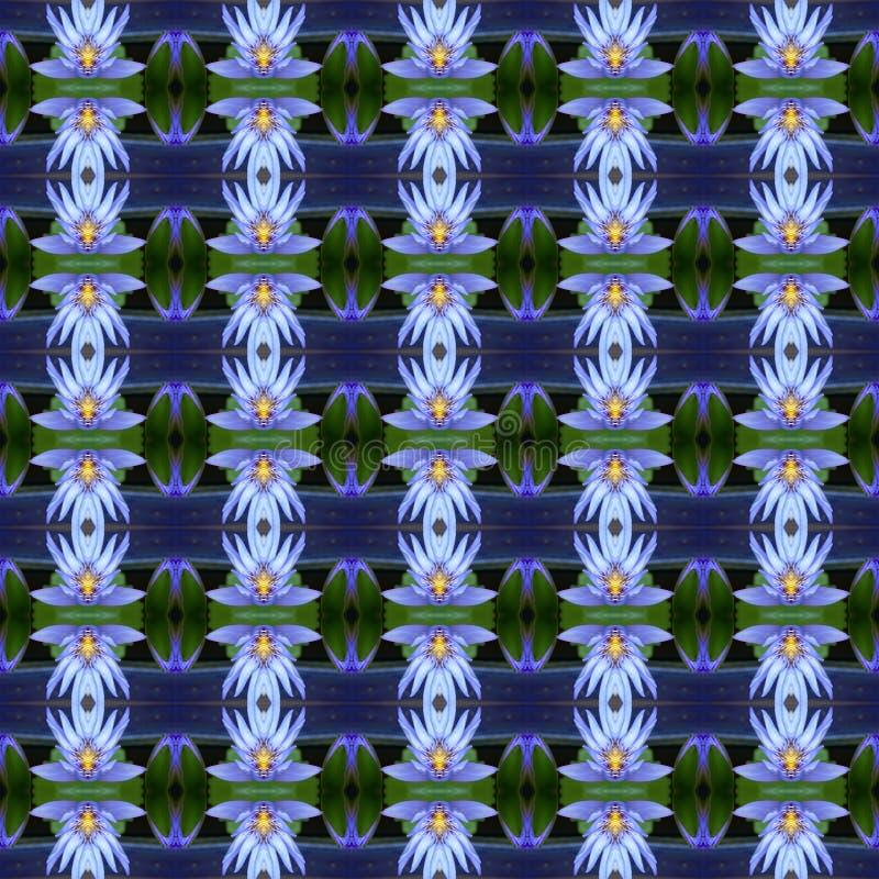 Merveilleux du lotus bleu sans couture illustration libre de droits