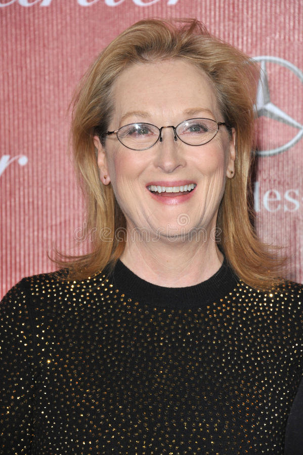 Free Meryl Streep Royalty Free Stock Photos - 45538958