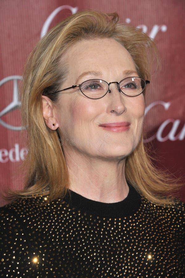 Free Meryl Streep Royalty Free Stock Image - 45538966