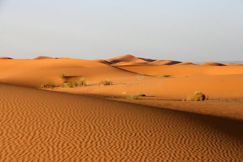 Download Merzouga dunes stock image. Image of empty, wild, waves - 16104095