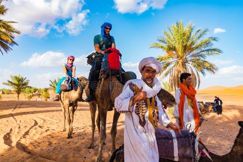 MERZOUGA MAROCKO - Augusti 02: En manlig handbok för Berber i traditionell klänning som utbildar en ung manlig kamel i erget Cheb arkivbild