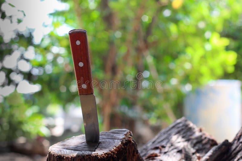 Mes met houten die handvat, in een stuk van boomstam wordt geplakt stock afbeelding