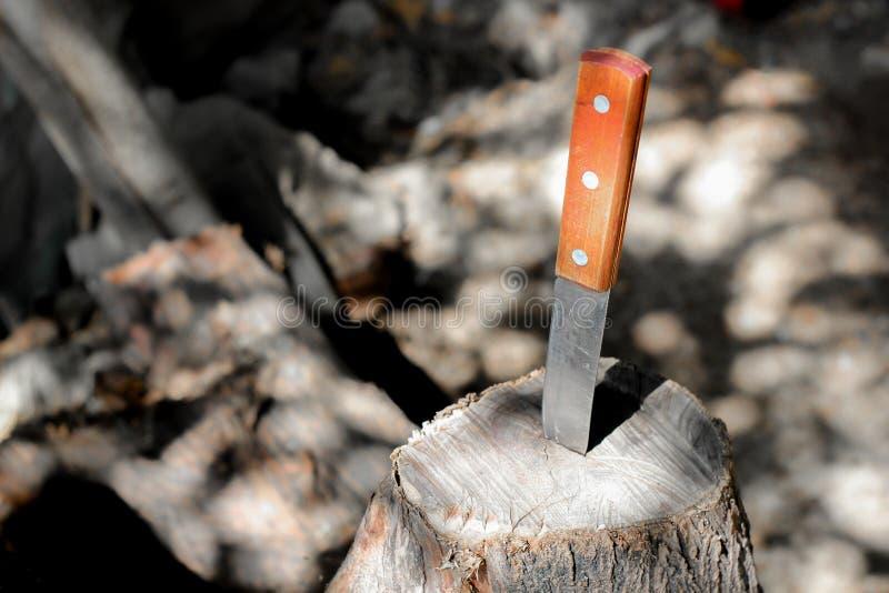 Mes met houten die handvat, in een stuk van boomstam wordt geplakt royalty-vrije stock foto's