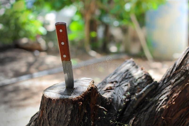 Mes met houten die handvat, in een stuk van boomstam wordt geplakt stock fotografie