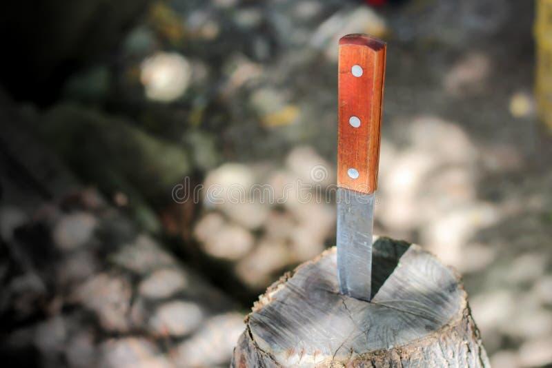 Mes met houten die handvat, in een stuk van boomstam wordt geplakt stock afbeeldingen